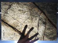 1-1.5mm Superthin Cut Rain Forest Green Marble Thin Stone Tile
